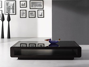 Modern Low Profile Coffee Table in Dark Wenge / Black